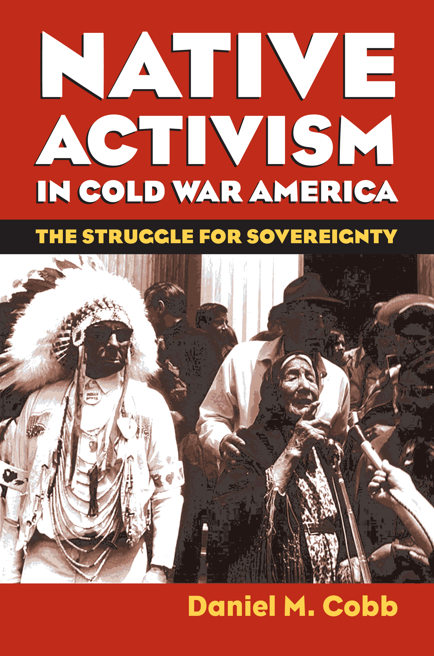 Image result for Native American social activism