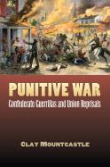 Punitive War